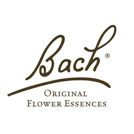 Bach Rescue Remedy